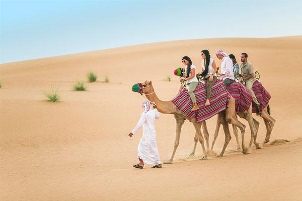 Exploring nature grandeurs in desert safari Dubai
