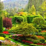 Glorious Gardens in Europe